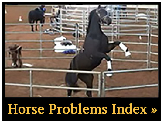 Horse Problems Index