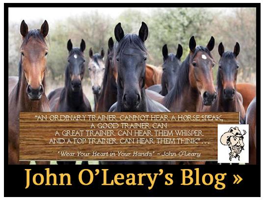 John O'Leary's Blog